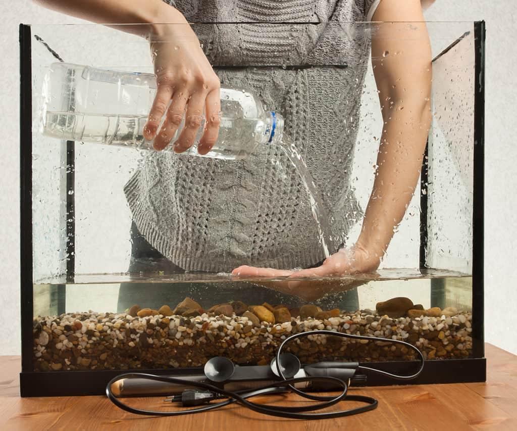 Як підготувати воду для акваріума