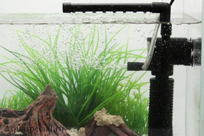 Чи можна виключати фільтр в акваріумі на ніч?