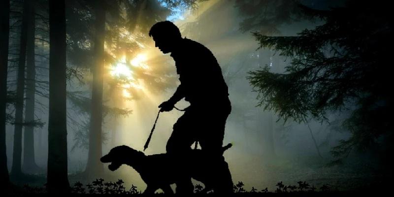 Як привчити собаку до нашийника та повідка?